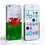 Caseflex iPhone SE Retro Wales Flag Case